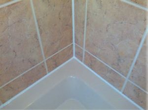 leaking shower repaired resealed
